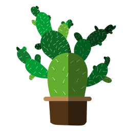 Multiple flat cactus pot drawing