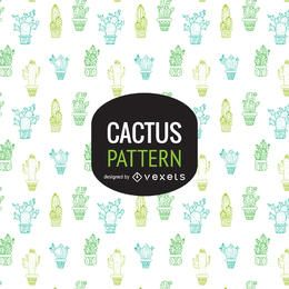 Cactus background or pattern