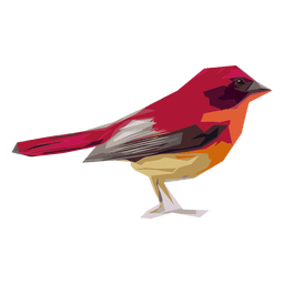 Red sparrow illustration