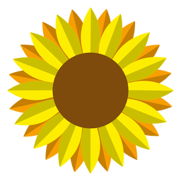 Isolated sunflower head vector graphic