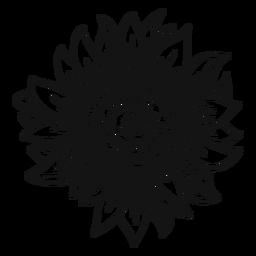 Sunflower head stroke