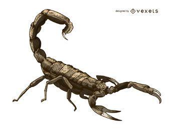 Estilo de tatuaje de ilustración de escorpión