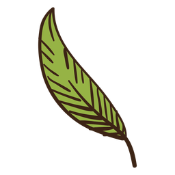 Plant leaf colored doodle