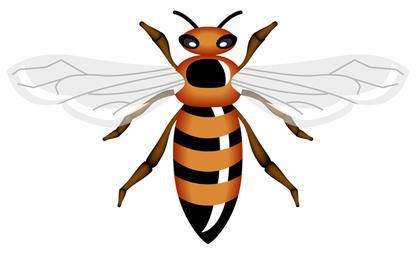 Vector Honey Bee