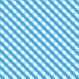Blue gingham texture
