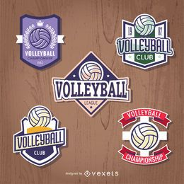 Set of volleyball badges