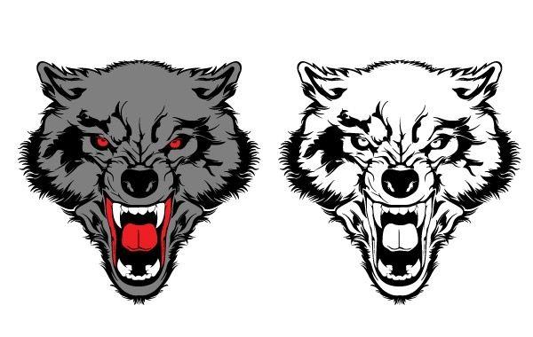 Волк рисунок оскал