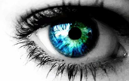 Eye Close Up Vector