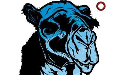 Cabeza de camello azul