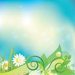 Floral Rodapé Margarida Fundo Colorido