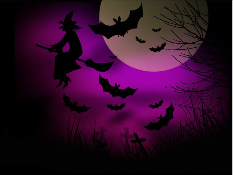Witch Bats Halloween Night Background - Vector download