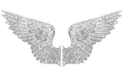 Random Free Vectors Part 4 Wings