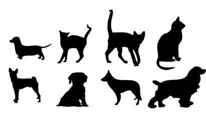 House animals Vector graphics