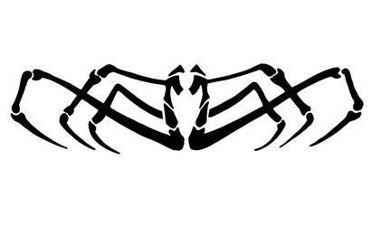 Vector de araña abstracta