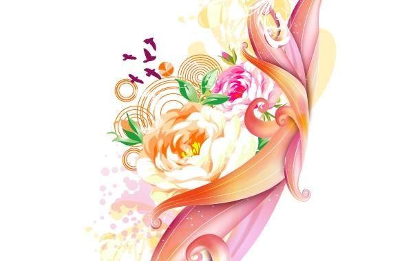 Rosa rosa vector art
