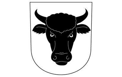 Kuh-Stierhörner