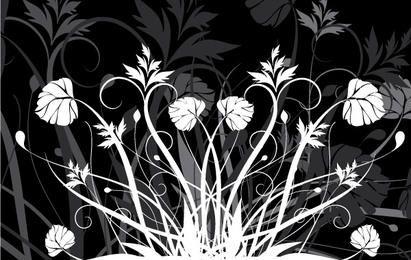 Blumen und Schwarzweiss