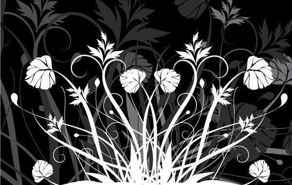 Flores Y Blanco Y Negro.