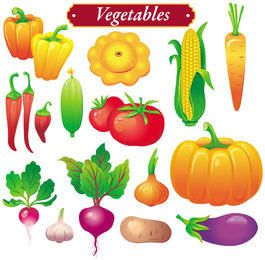 Bright Colored Vegetable Set