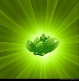 Blätter mit grünem Lichtstoß-Vektor-Zusammenfassungs-Hintergrund