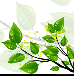 Resumo verde deixa ilustração vetorial
