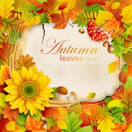 Lindo quadro de folhas e flores de outono
