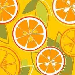 Oranges Combine Vector