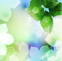 Hermosa hoja verde