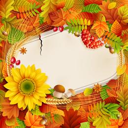 Hermosa foto de otoño