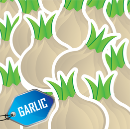 Garlic illustration pattern with tag