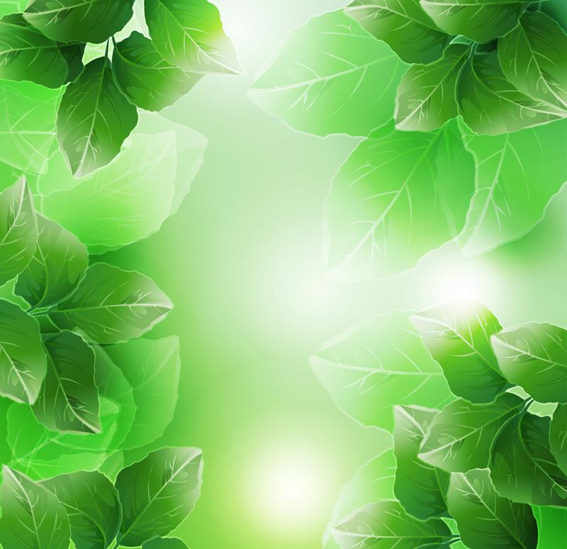 Plantas y deja el fondo del marco descargar vector - Marcos para plantas ...