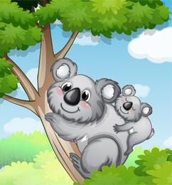 Koala family illustration