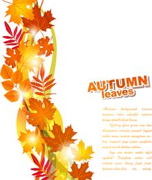 Linda folha de outono 4