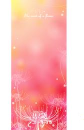 Color Soft Floral 3