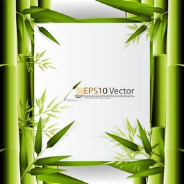 Hintergrund des Bambus 3D Hintergrund