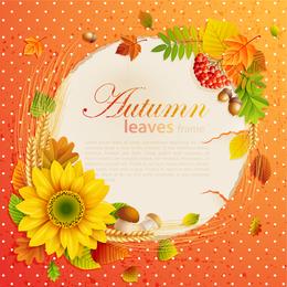 Beautiful Autumn Leaves 3