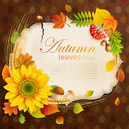 Beautiful Autumn Leaves 4