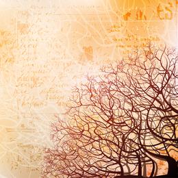 Fondo de silueta de árbol 4