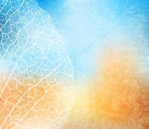 Leaf veins silhouettes illustration