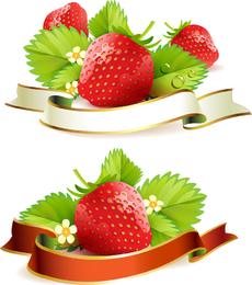 Strawberry Theme Background 5