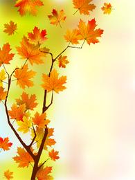 Cartaz de folhas de maple vertical