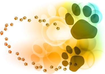 Pegadas de bolhas coloridas