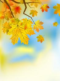 Bordo de outono deixa a ilustração sobre azul