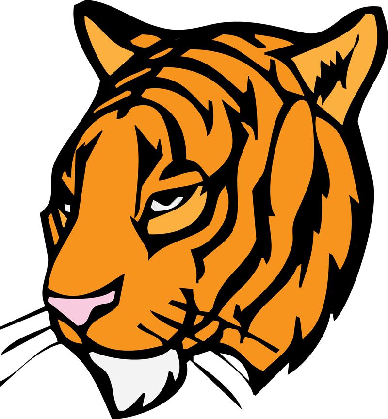 tiger head vector download tiger head clipart png tiger head clipart images