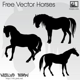 Cavalos de vetor definido