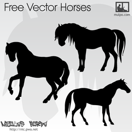 Vector Horses Set