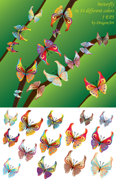 14 Colours Butterfly Vector