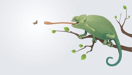 Camaleón vector