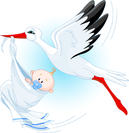 Stork Carrying A Baby Vector