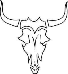 Cows Skull